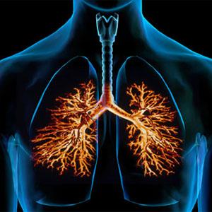 allergic-bronchitis